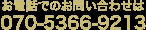 070-5366-9213